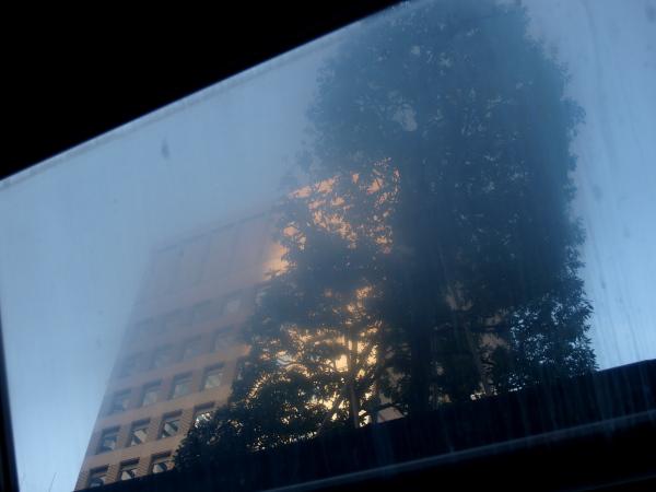 曇りガラス1.jpg
